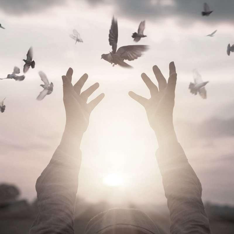 zelfrealisatie, ascensie, hooggevoeligheid, leven vanuit je hart, bewustzijn, bewustwording, mediteren in Eindhoven, medium in Eindhoven, healing in Eindhoven, reading in Eindhoven, lichtwerkers, spiritualiteit, spiritueel ontwaken, I AM, lichtwerkers, nieuwetijdskind